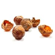 Ingredients Soap nuts