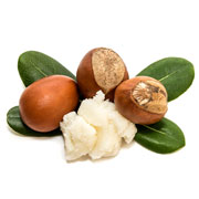 Ingredients Shea butter