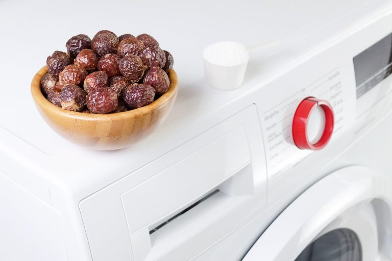Eco-Product of the Month: Soap Nuts